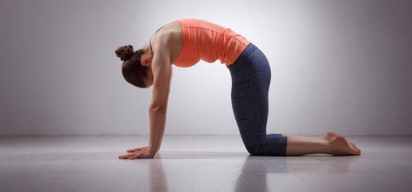 Bài tập yoga giảm đau lưng cho dân văn phòng